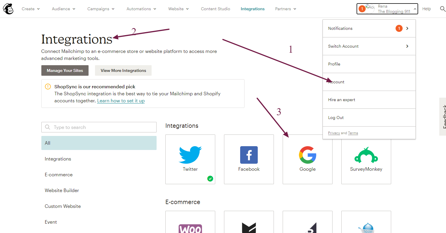 screenshot of Google/Mailchimp integration